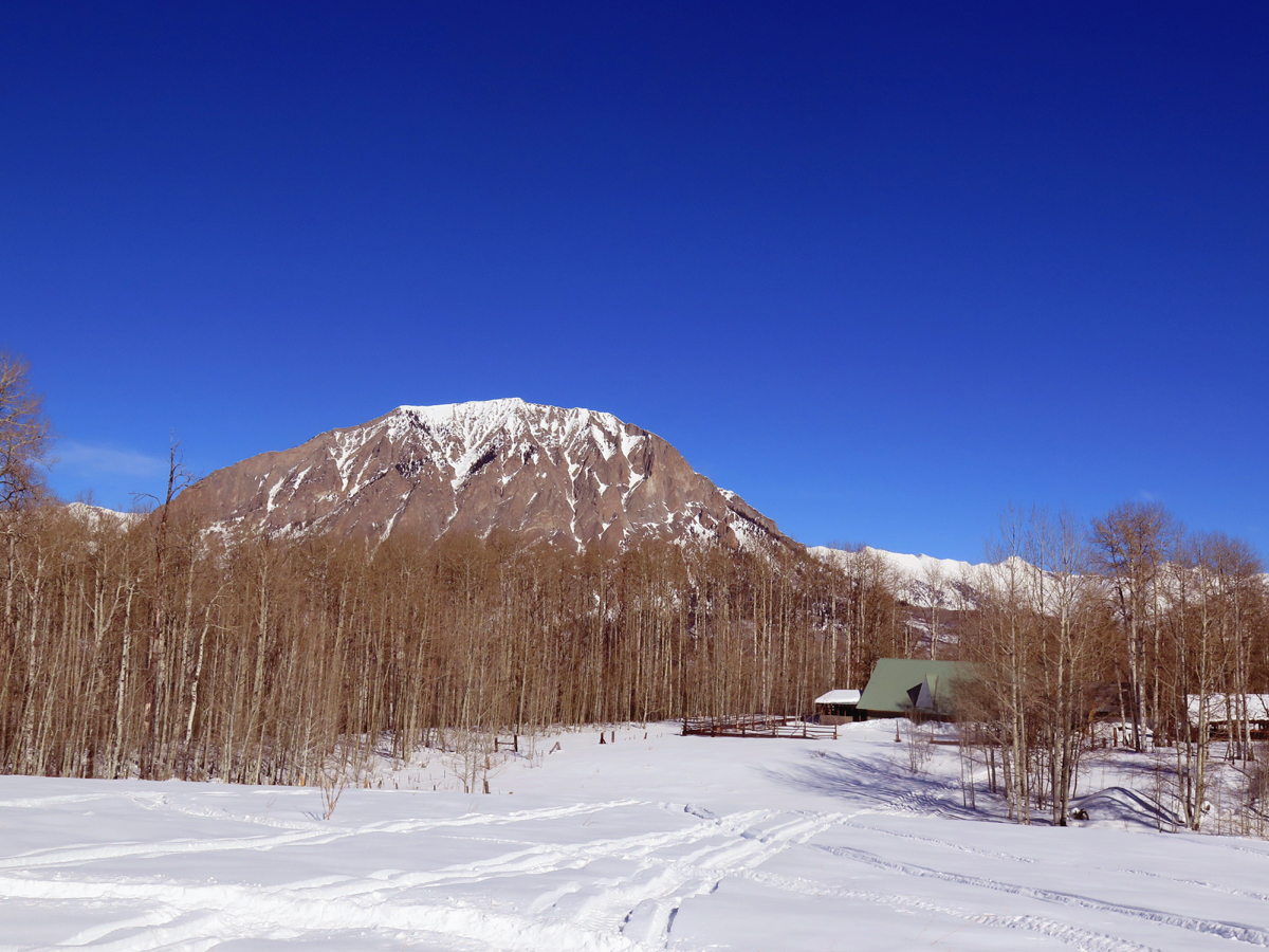 Crested Butte cabin with acreage