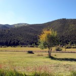 Quartz Creek Valley horse property
